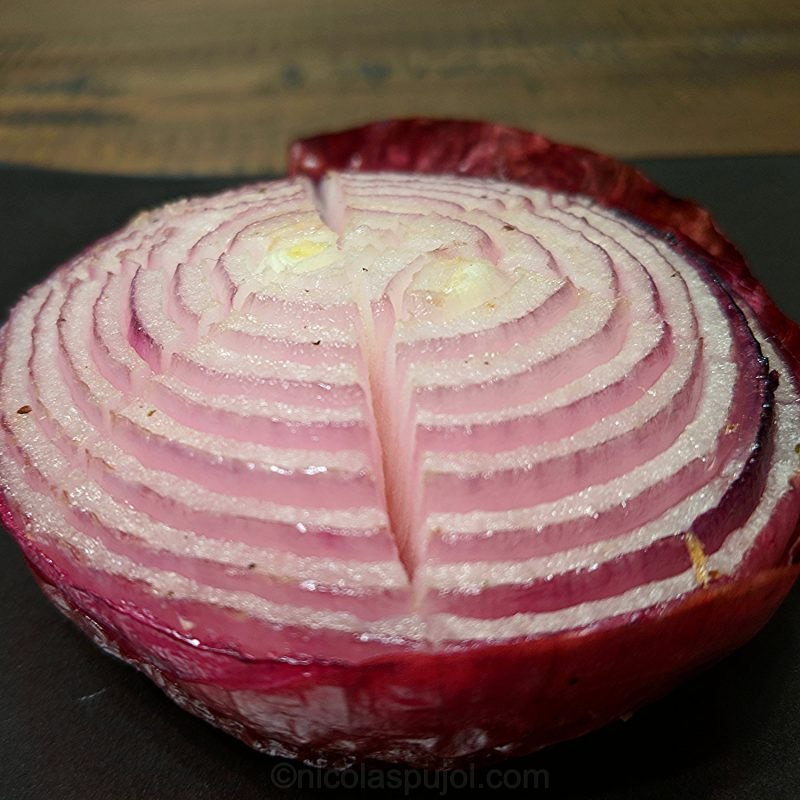 seared onion appetizer