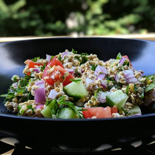Modern tabouli recipe with no oil and oats