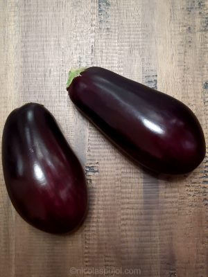Small eggplants for air fryer appetizers