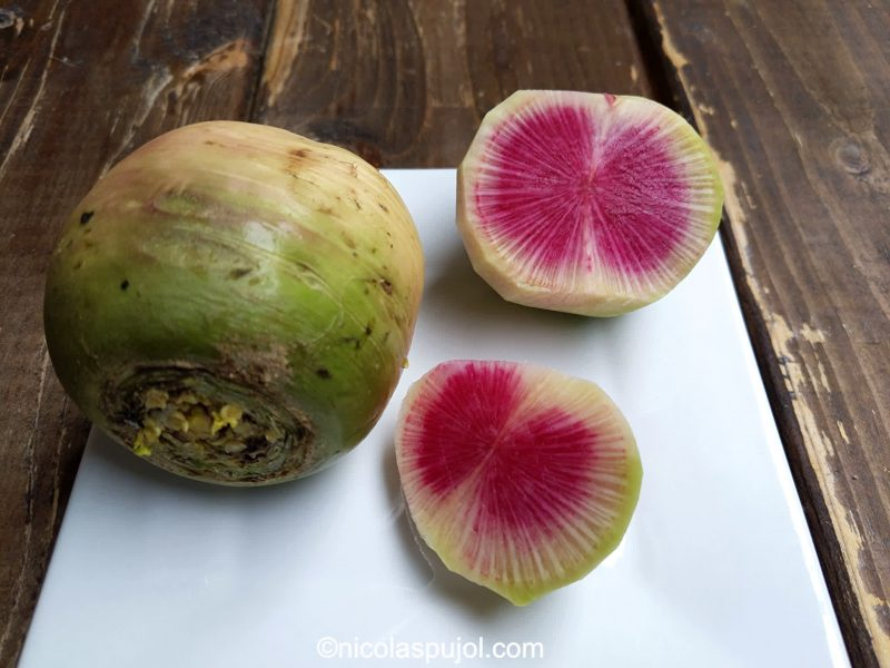 Burpee watermelon radish salad recipe